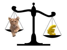 Leu vs Euro