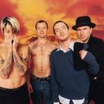 RED HOT CHILI PEPPERS vine in Romania