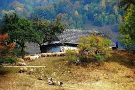 Romania place